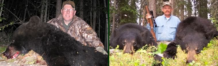Alaska Private Guide Service Black Bear Hunting