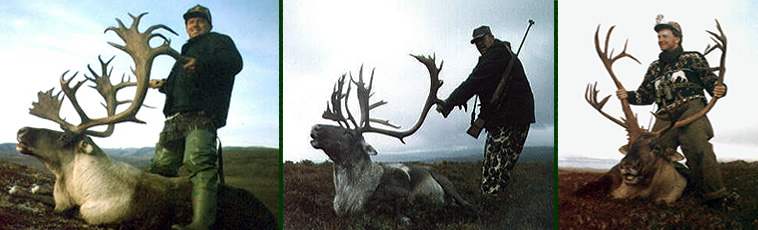 Alaska Private Guide Service Caribou Hunting