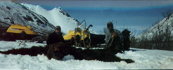alaska brown bear hunting guides